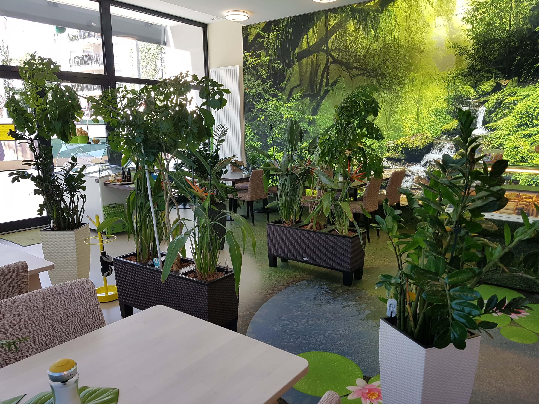 cafe_brasil_innen_regenwald_2