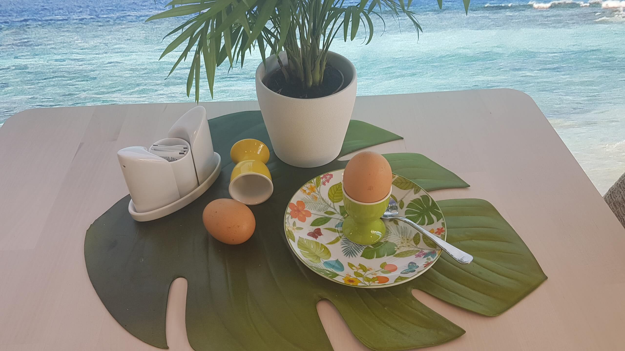 einfaches Ei Freilandhaltung Cafe Yellowbrasil